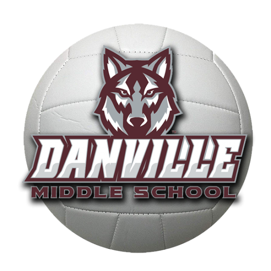 2019 DANVILLE VOLLEYBALL