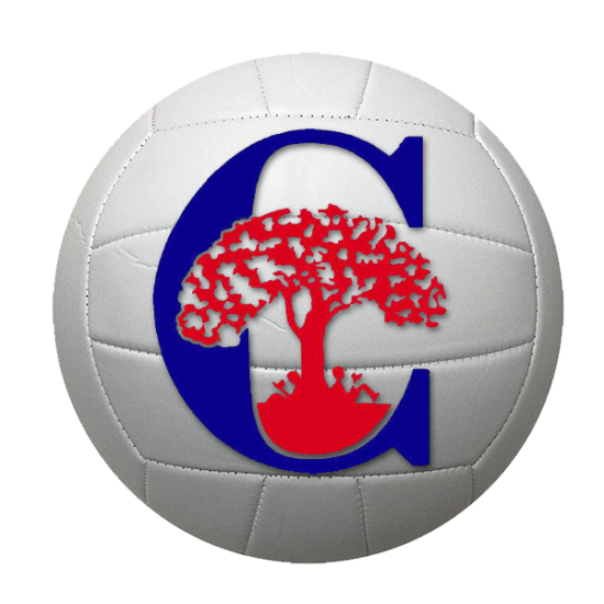2019 COMAL INTRAMURAL VOLLEYBALL CMS